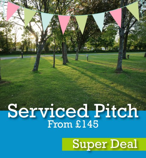 Serviced pitch